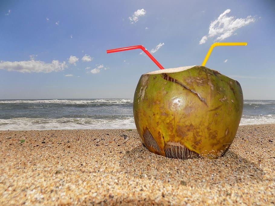 Para curiosos ¿Por dónde le entra el agua al coco?